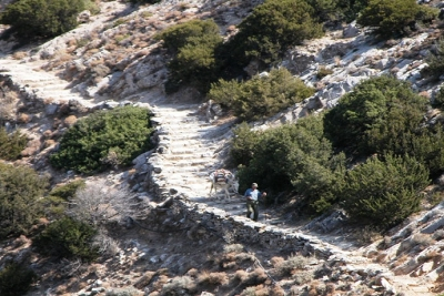 Paths of Sifnos